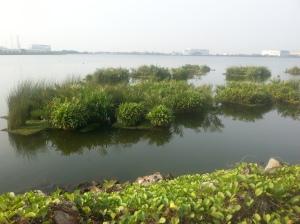 Reservoir 7