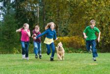 dog-running-with-kids