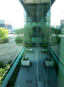 Trees on balcony