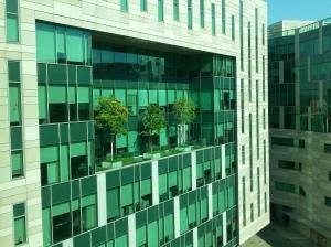 Trees on 8 th floor