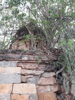 old_vimanam