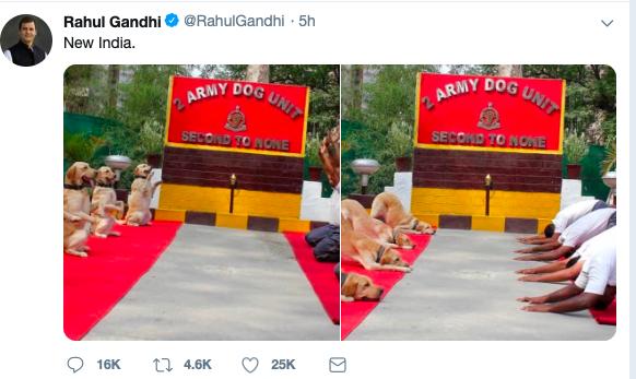@rahulgandhi on Yoga Day